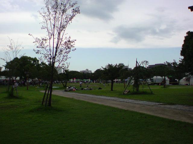 舞鶴公園から...。