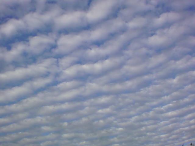 今日の博多の空から...。