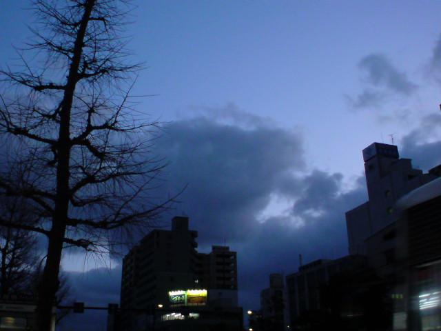 今朝も曇りの朝です。