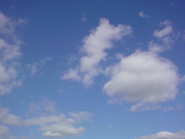 気持ちのいいお天気ですよ〜♪