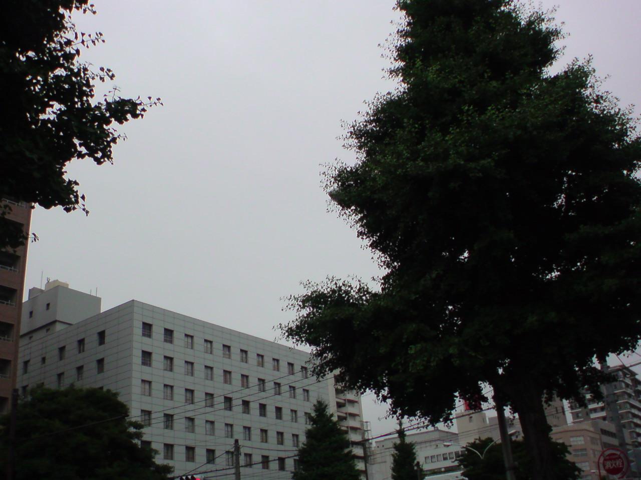 """""""ありがとう""""日WC<br />  本代表☆"""
