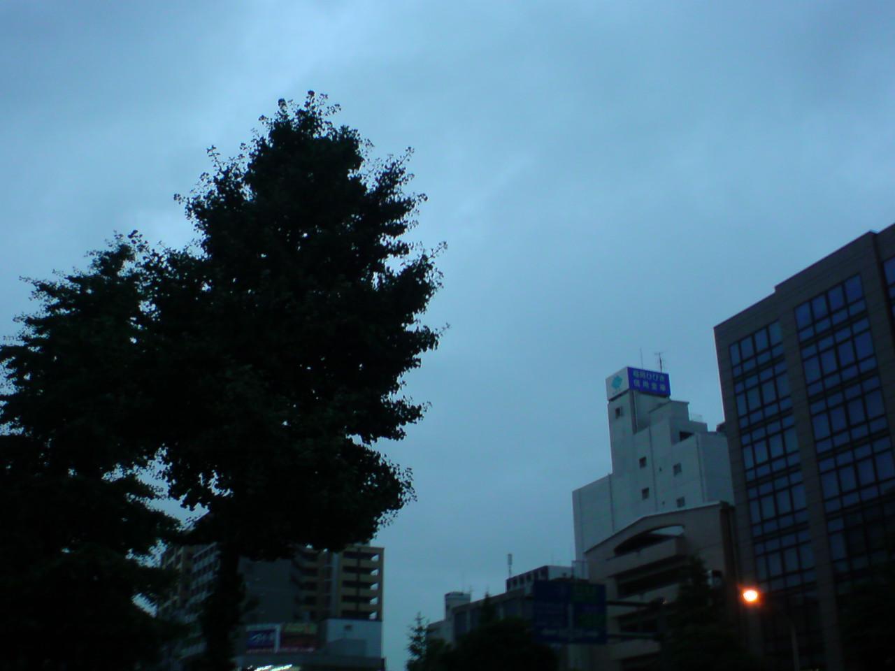 今日も朝から激しい雨です!